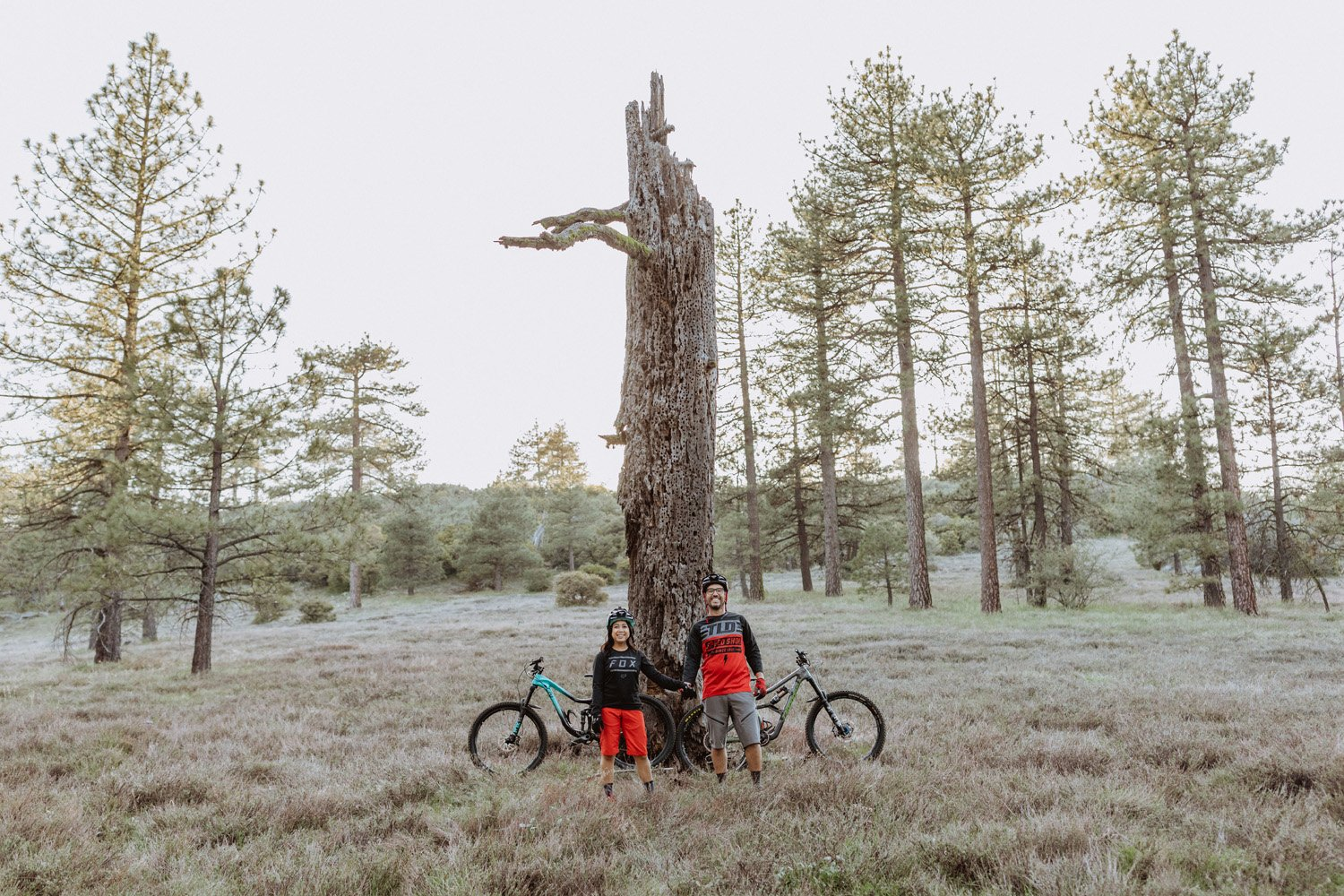Couple holding hands at their Laguna Mountain engagement session.